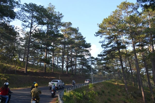 CHAILAIBACKPACKER DALAT (69)