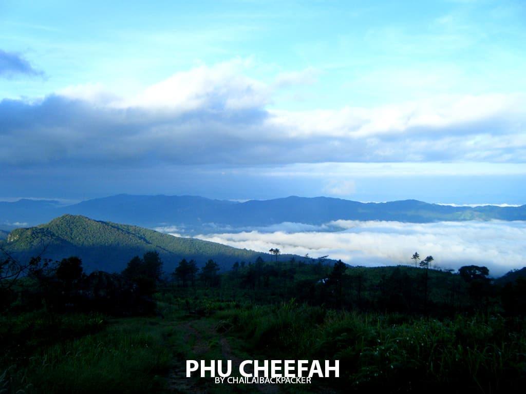 ภูชี้ฟ้า เชียงราย (21)