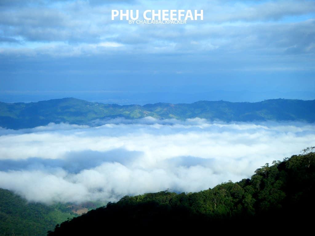 ภูชี้ฟ้า เชียงราย (23)