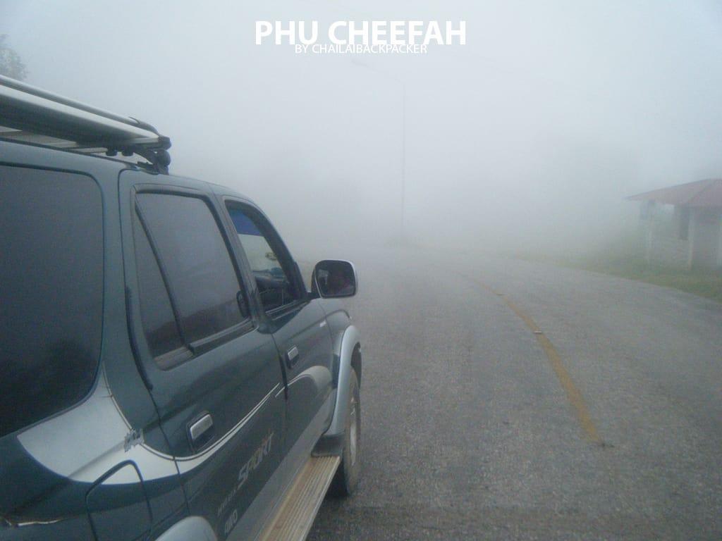 ภูชี้ฟ้า เชียงราย (9)