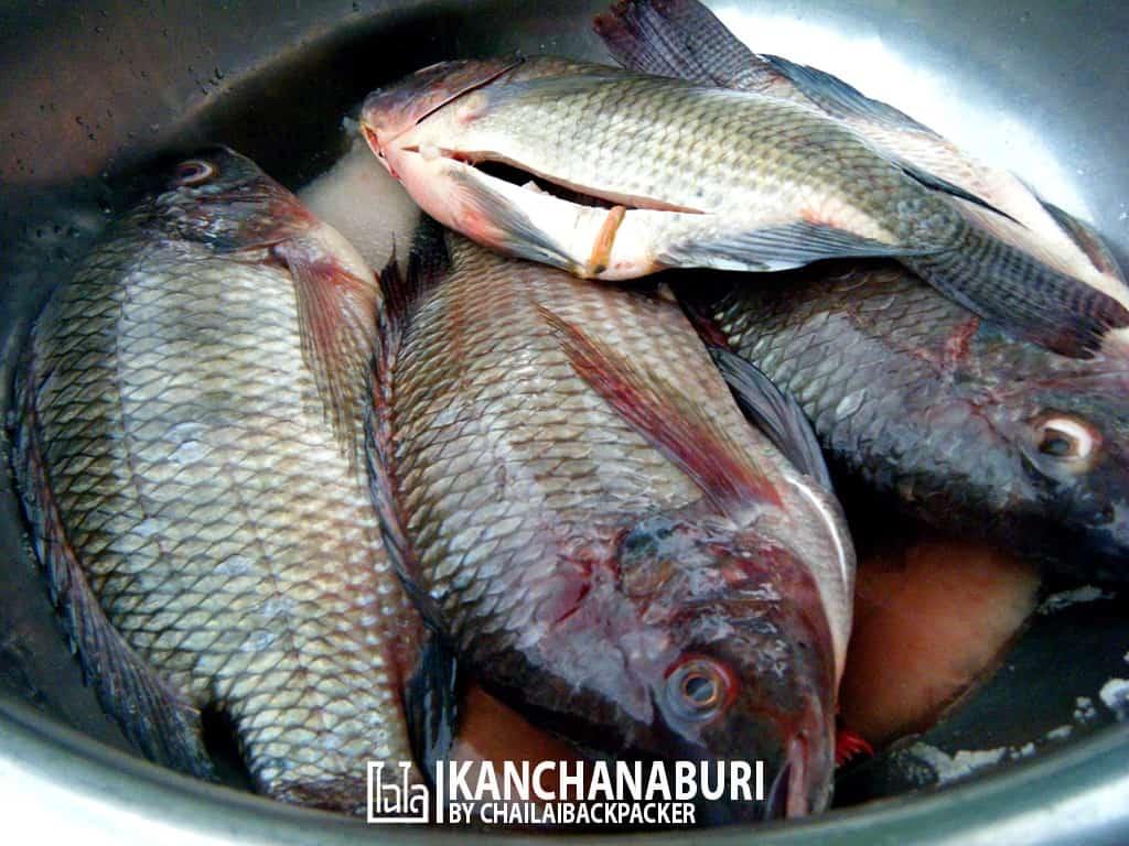 kanchanaburi-19