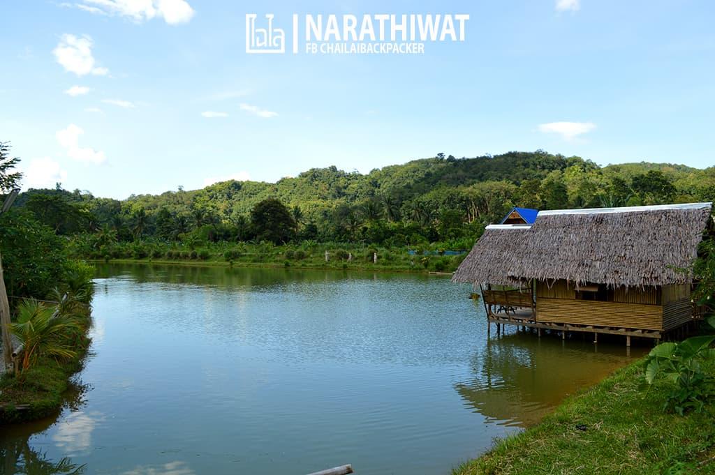 narathiwat-chailaibackpacker-129