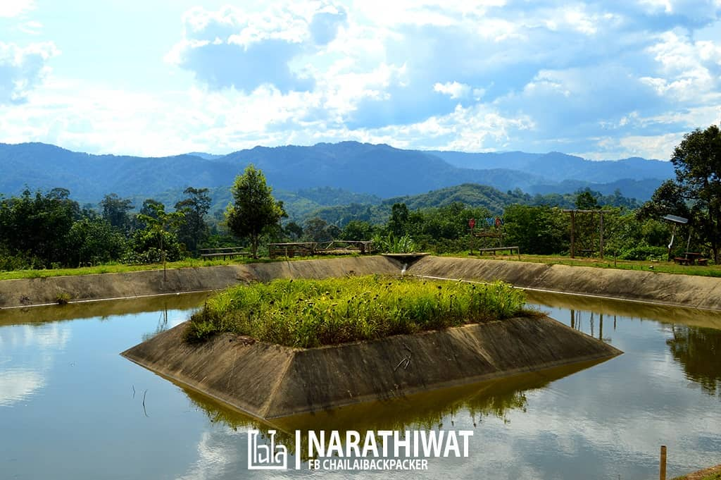 narathiwat-chailaibackpacker-143