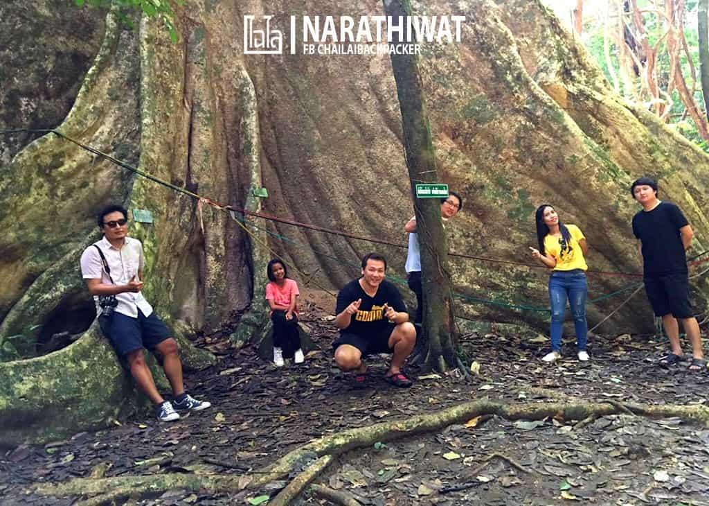 narathiwat-chailaibackpacker-152