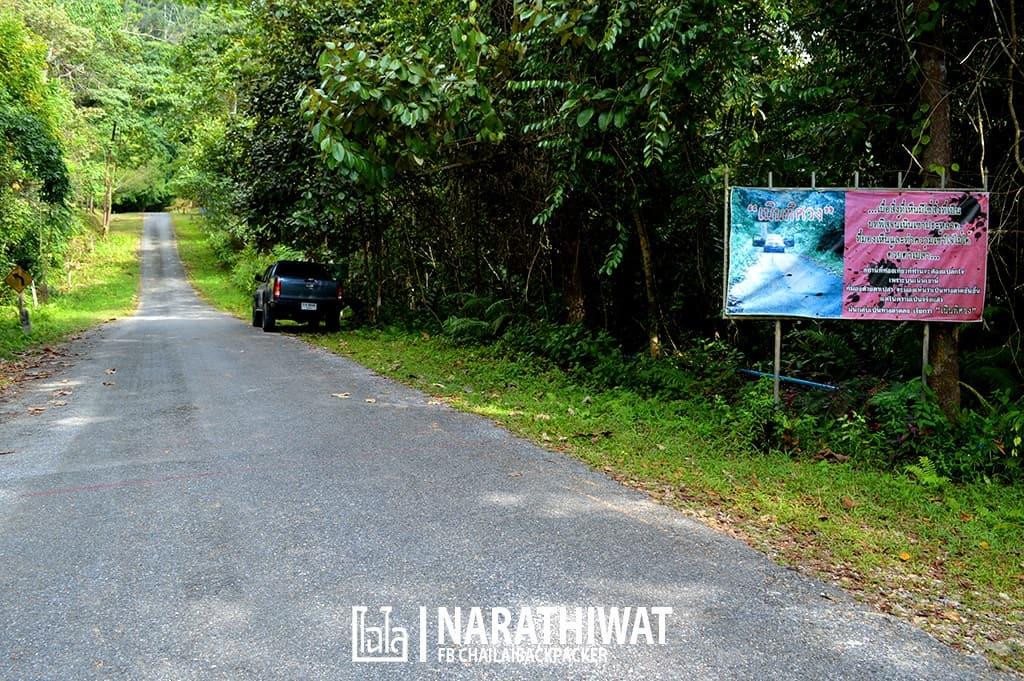 narathiwat-chailaibackpacker-154