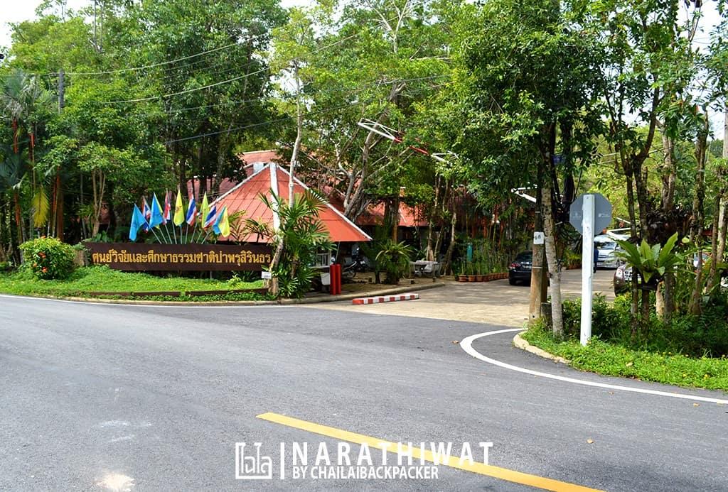 narathiwat-chailaibackpacker-32