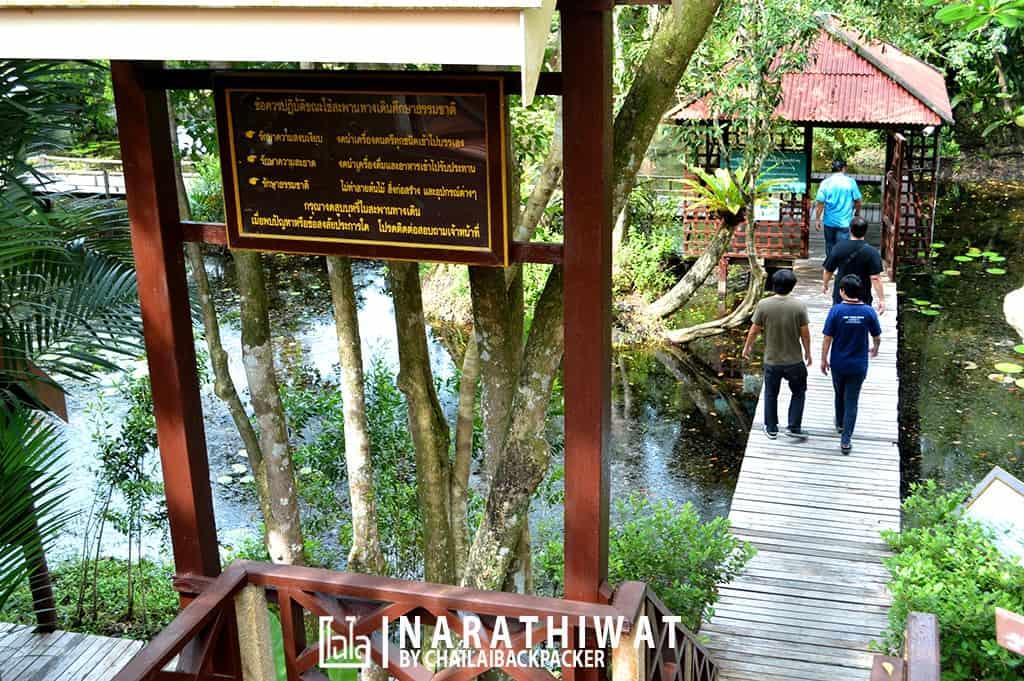 narathiwat-chailaibackpacker-35