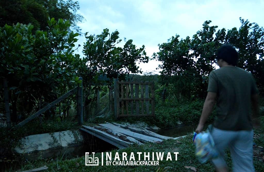 narathiwat-chailaibackpacker-70