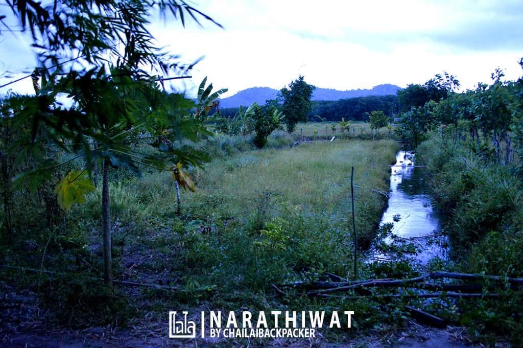 narathiwat-chailaibackpacker-72