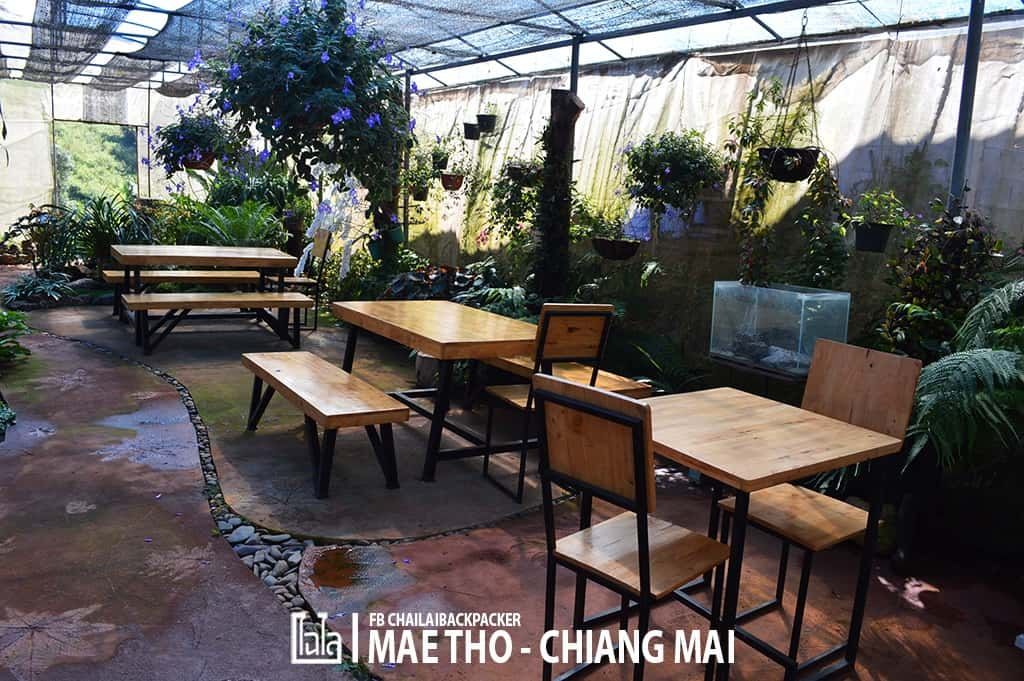 mae-tho-111