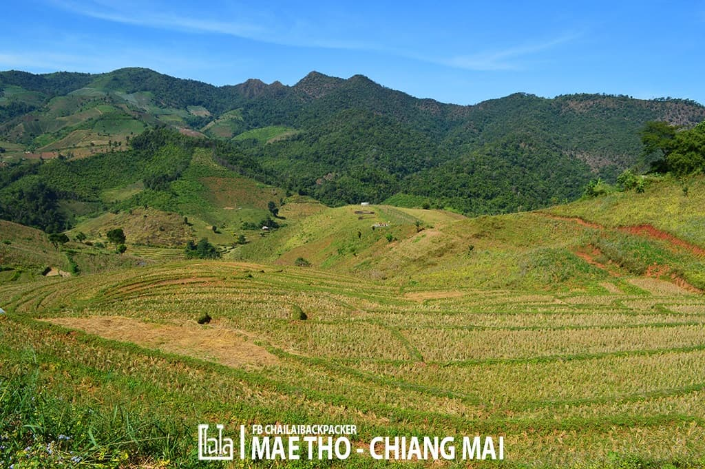 mae-tho-140