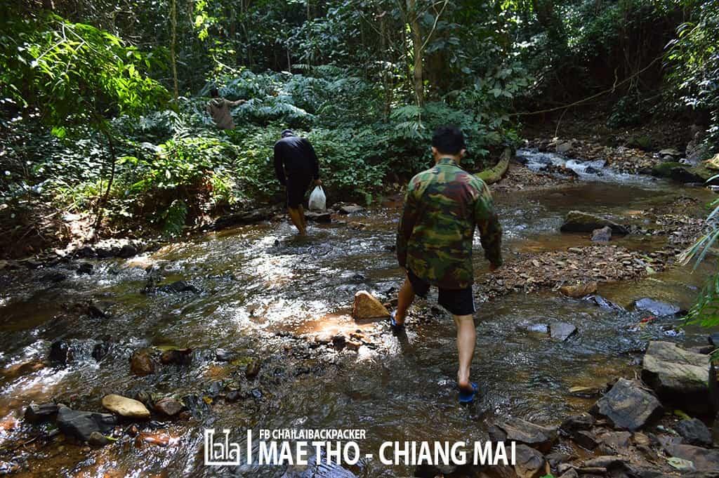 mae-tho-142
