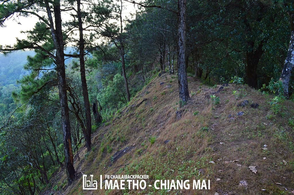 mae-tho-161