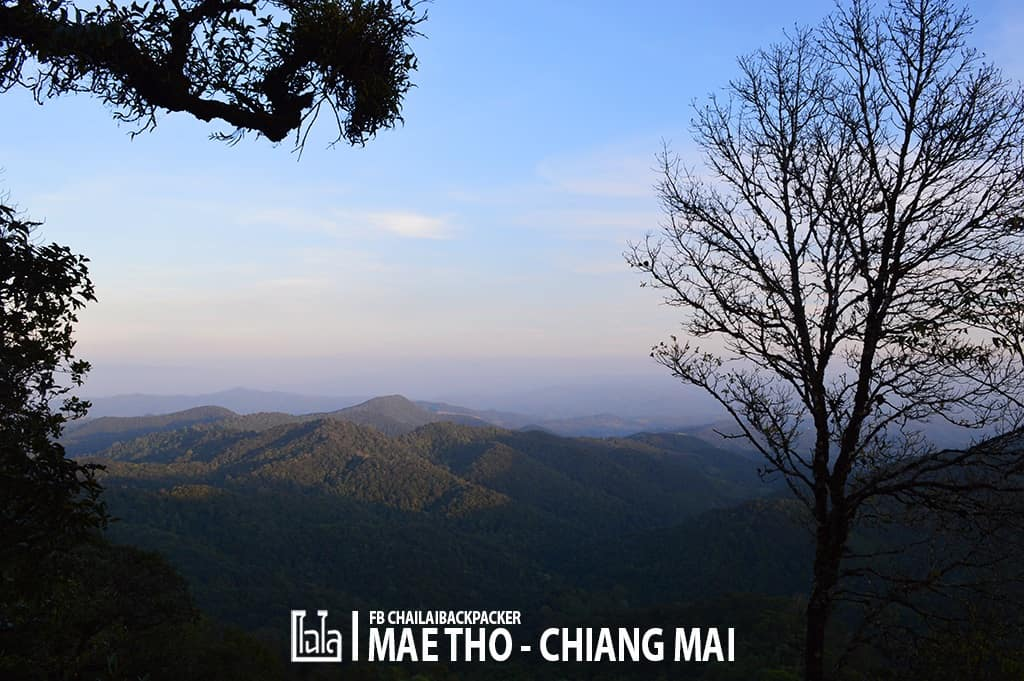 mae-tho-162