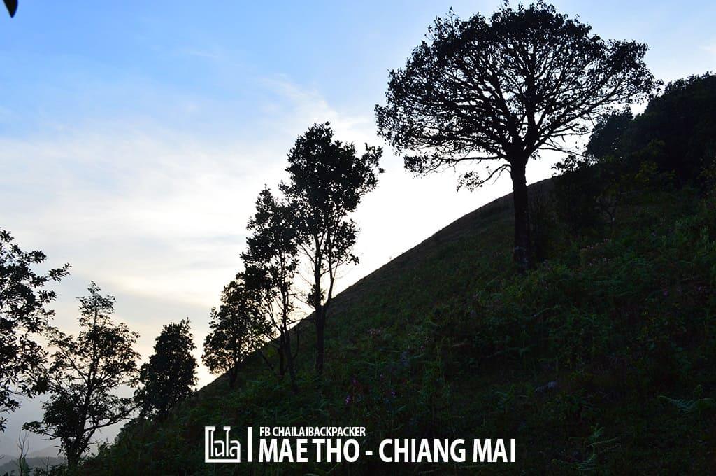 mae-tho-163