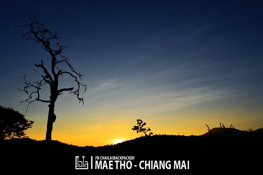 mae-tho-35