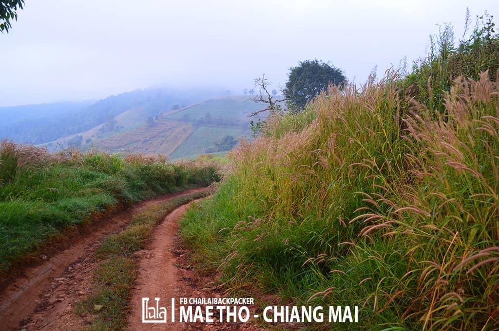 mae-tho-48