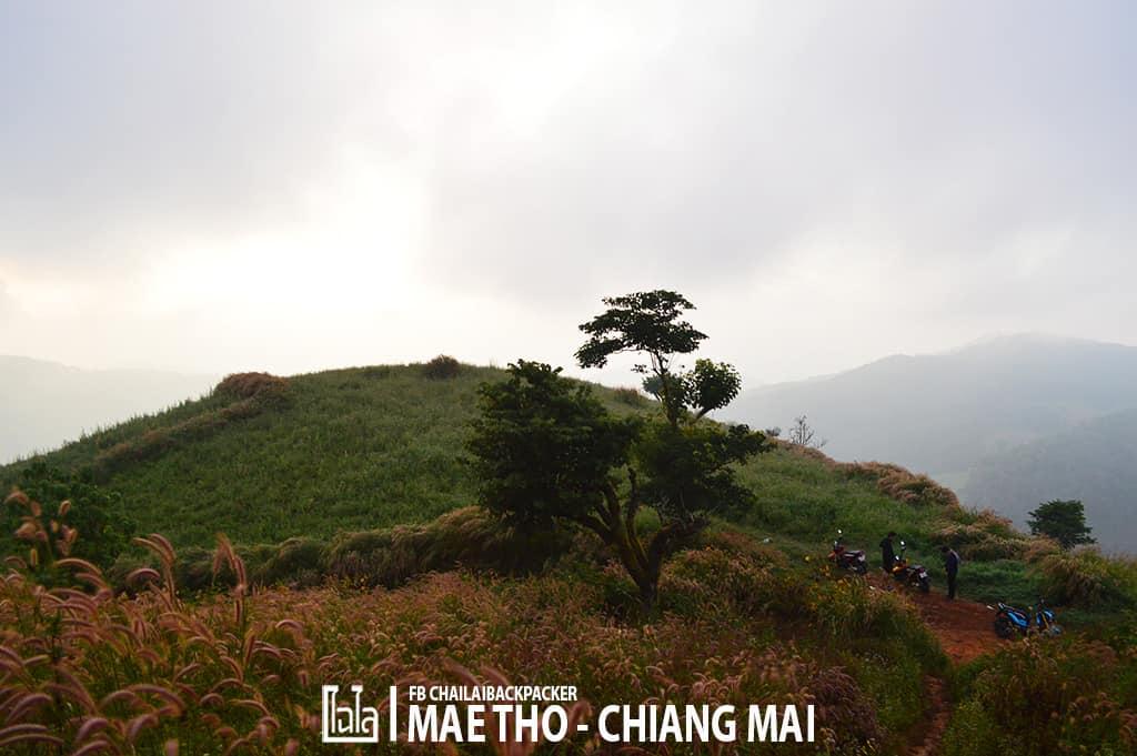mae-tho-53