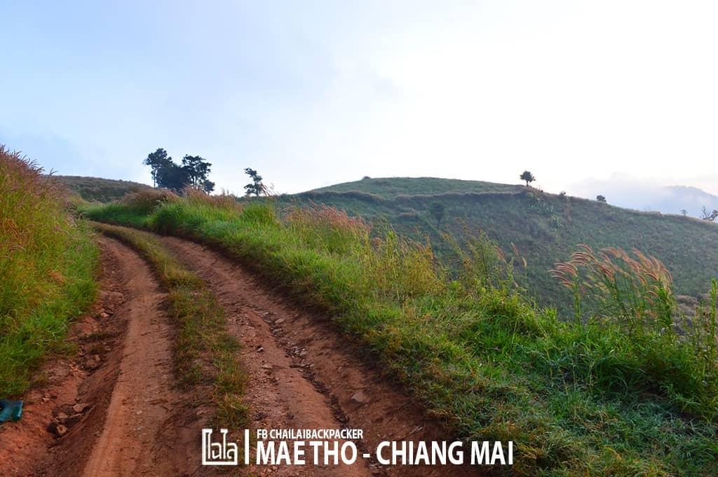 mae-tho-55