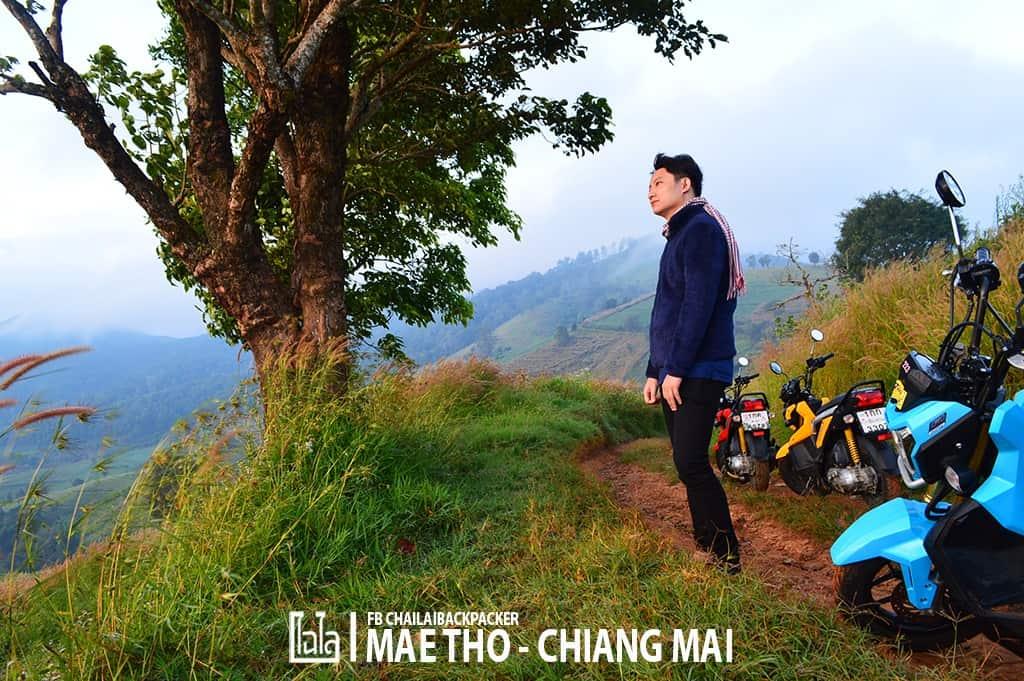 mae-tho-56