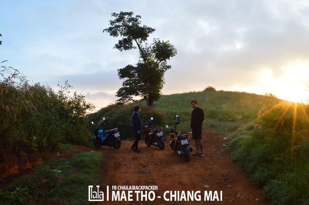 mae-tho-63