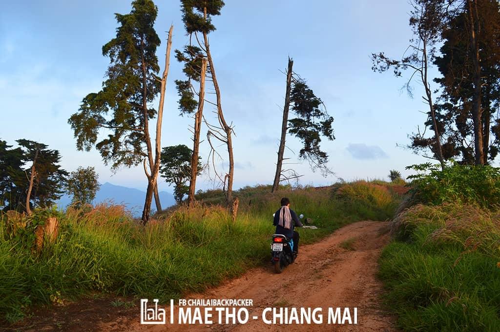 mae-tho-64