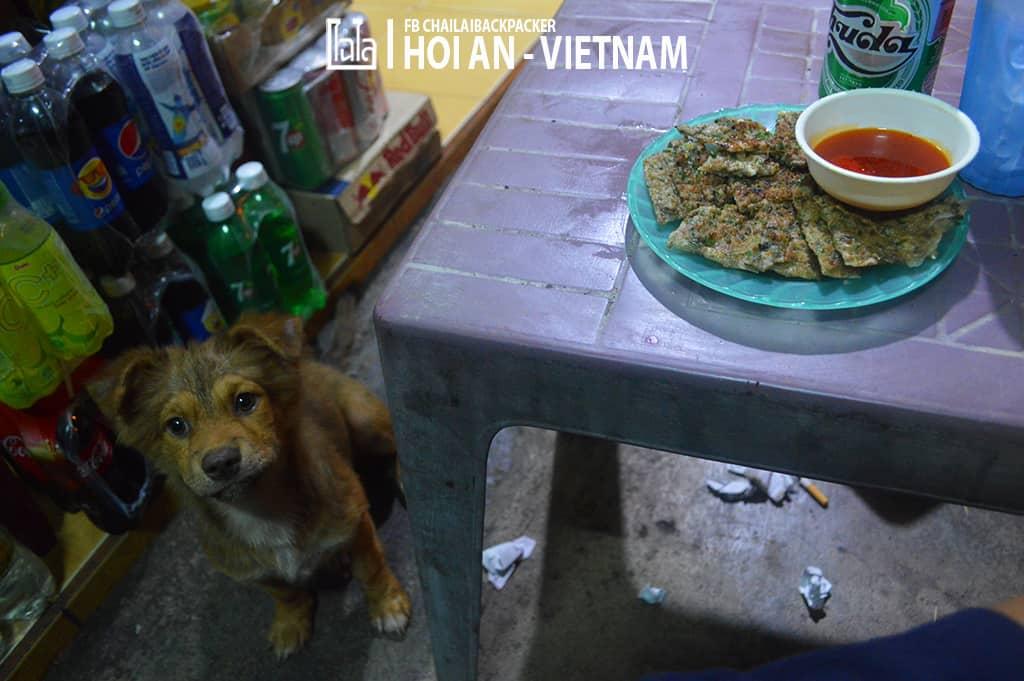 Hoi An - Vietnam (276)