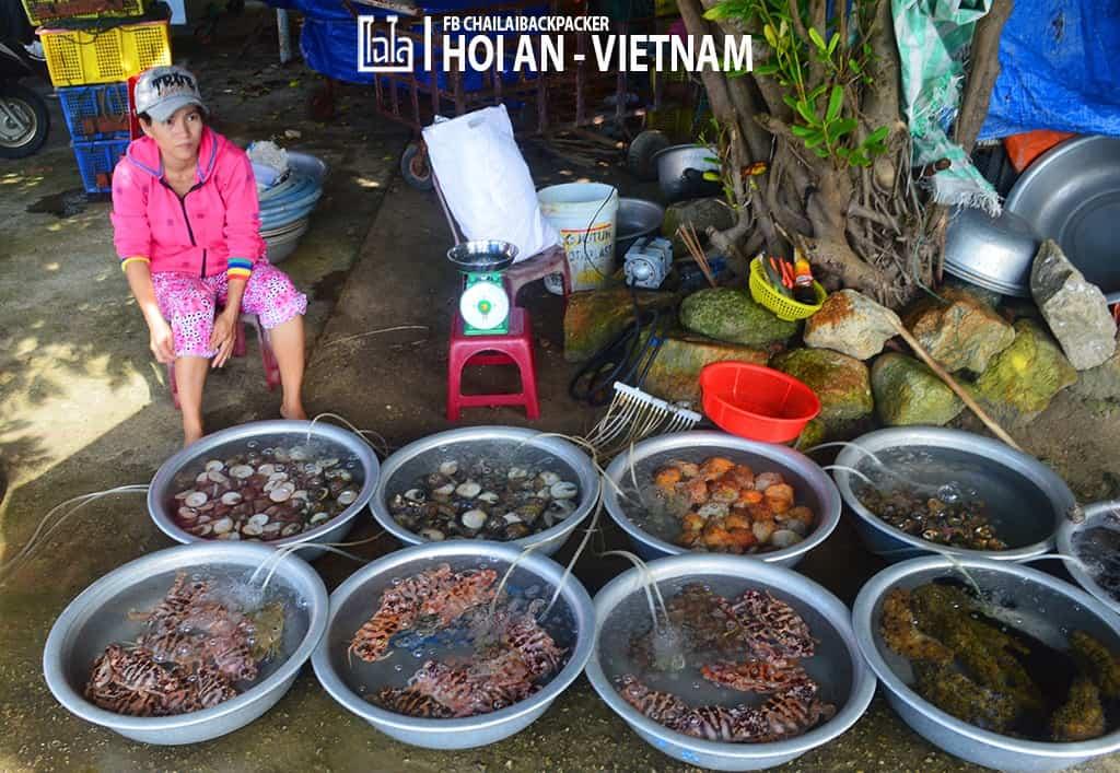 Hoi An - Vietnam (299)