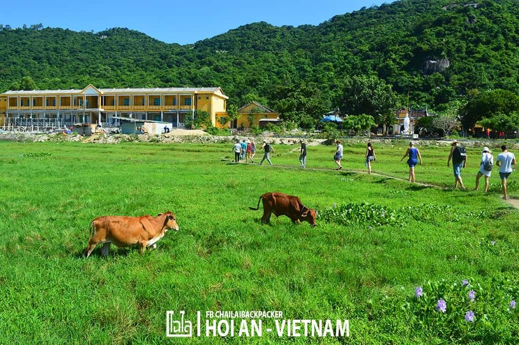 Hoi An - Vietnam (309)