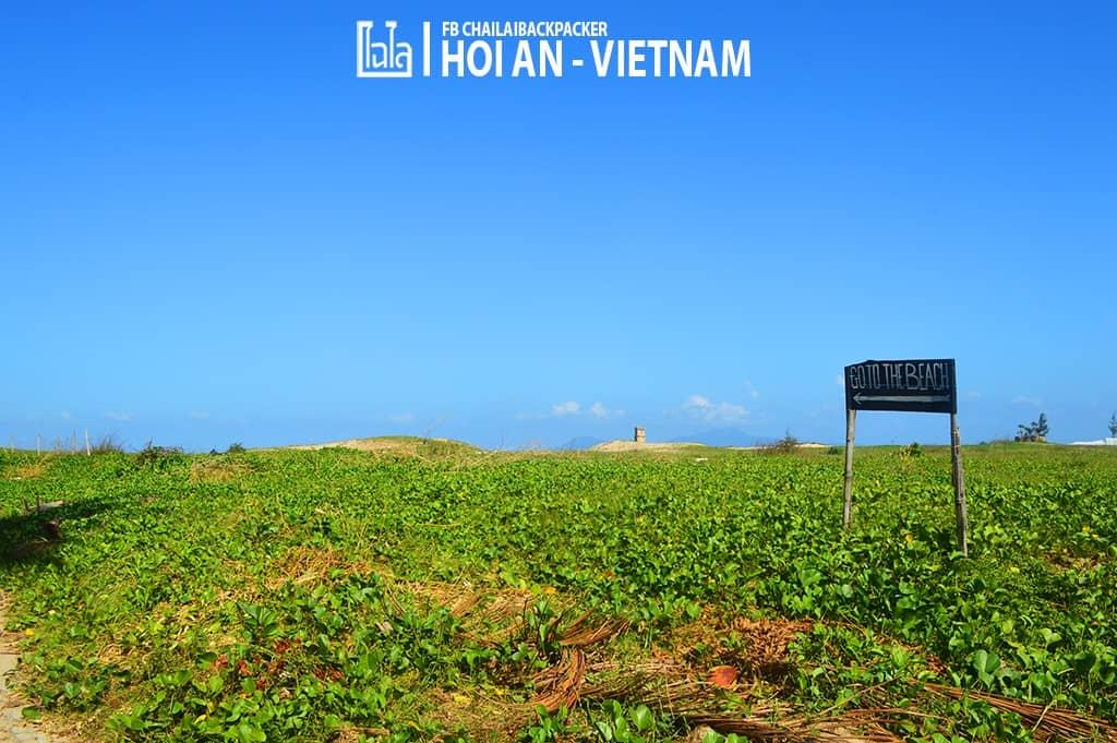 Hoi An - Vietnam (379)