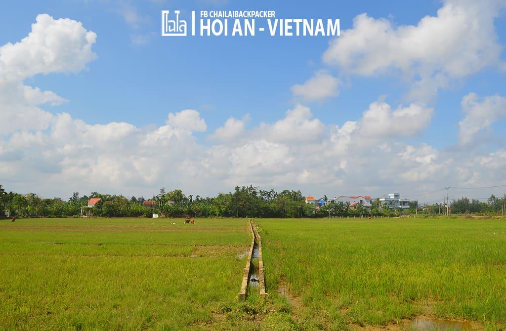 Hoi An - Vietnam (401)