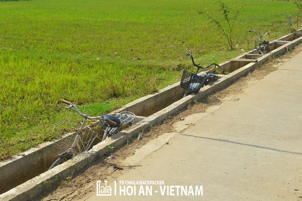 Hoi An - Vietnam (404)