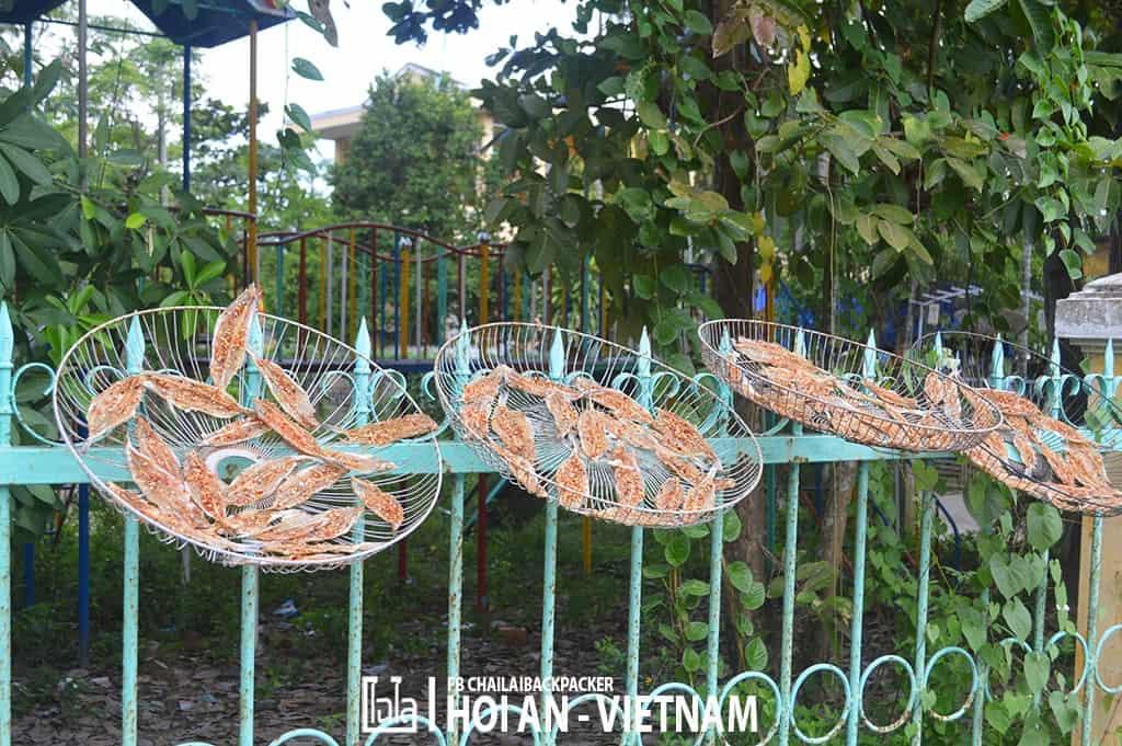 Hoi An - Vietnam (410)