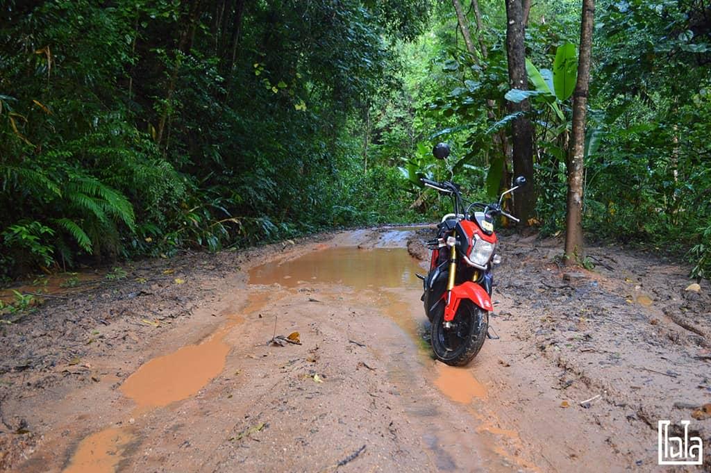 Chiang Mai - นาขั้นบันได (26)
