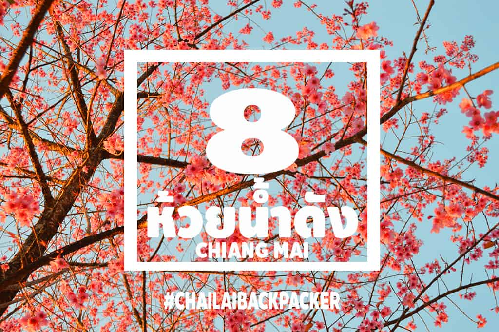 Chiang Mai Pink (30)