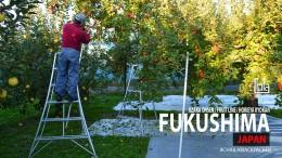 Cover EP2 Fukushima