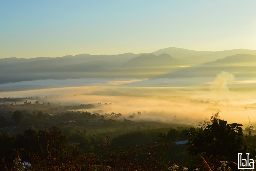Yunlai Viewpoint (11)