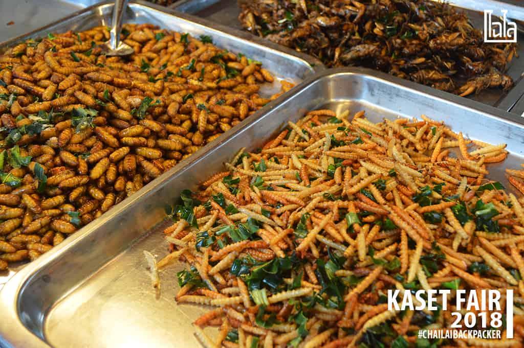 10 #แมลงทอด #พิกัด : โซน F สินค้าเกษตรบริโภค