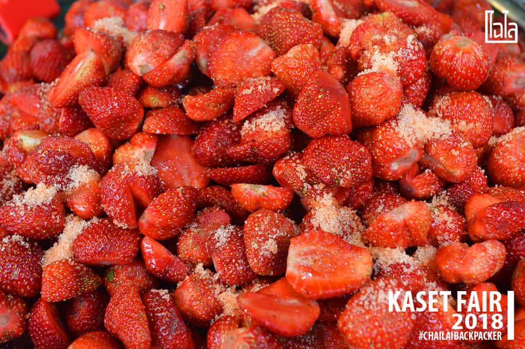 16 #สตรอเบอร์รี่ #พิกัด : โซน F สินค้าเกษตรบริโภค