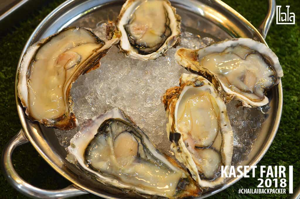 20 #หอยนางรมสด #พิกัด : โซน F สินค้าเกษตรบริโภค