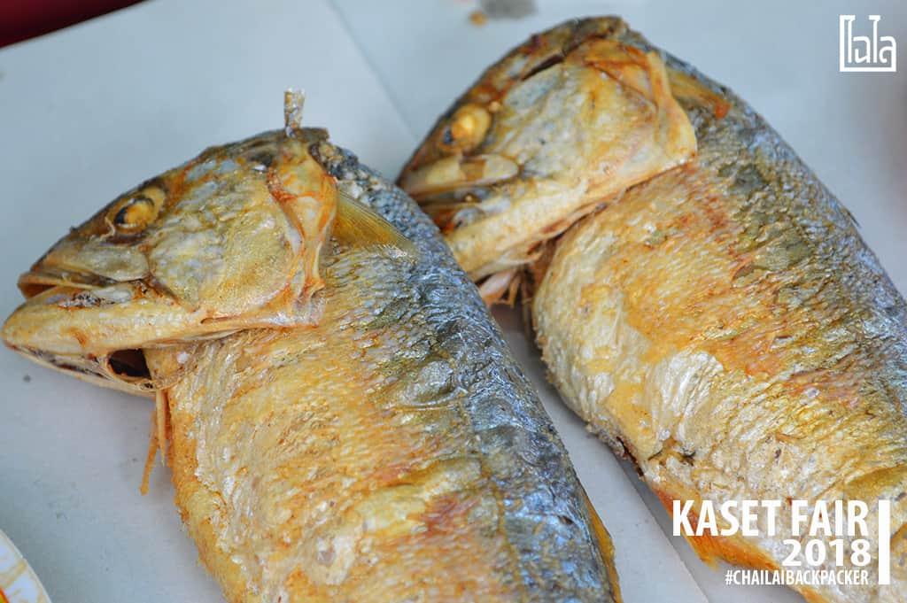 33 #ปลาทูโอมาน ปลาน้ำลึก ปีนึง.. ได้กินแค่ 4 เดือน #พิกัด : โซน E ตลาดนนทรีวิถีเกษตร(บริเวณสำนักพิพิธภัณฑ์)