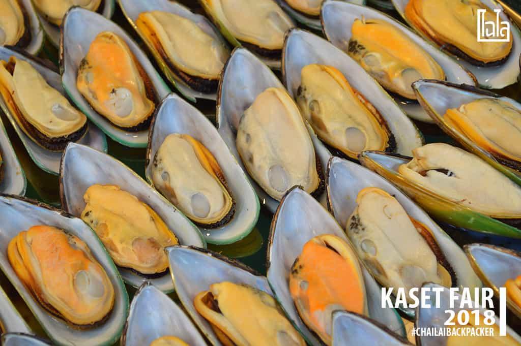 52 #เจ๊หอยหญ่ายยยยยย #พิกัด : โซน F สินค้าเกษตรบริโภค