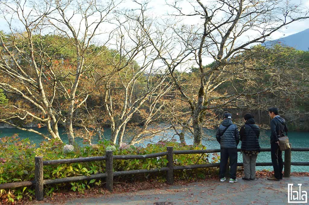 Fukushima EP5 CHAILAIBACKPACKER (27)