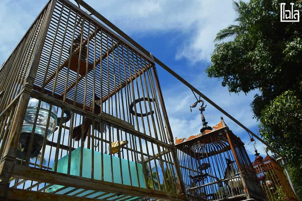 Koh Klang - Krabi (111)