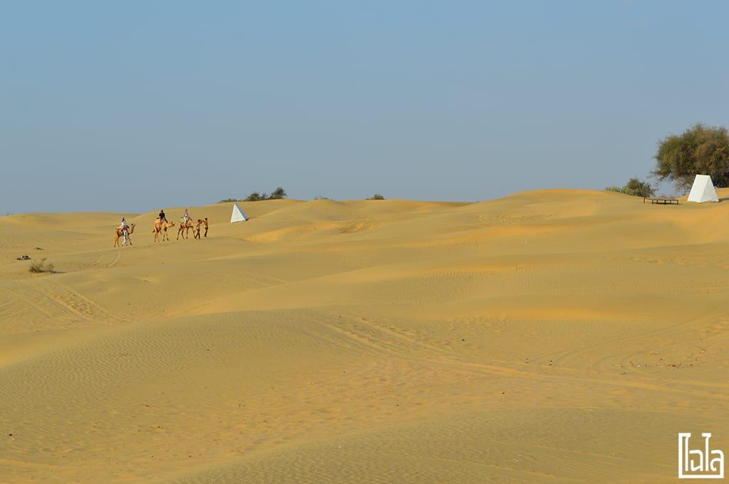 Jaisalmer India (45)