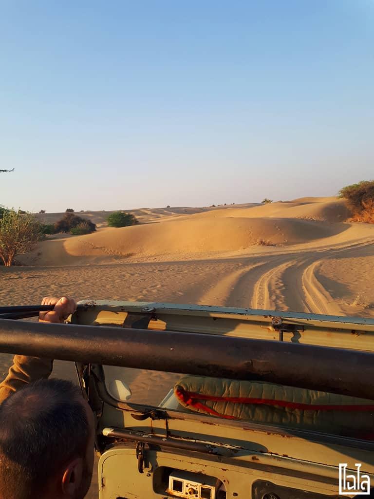 Jaisalmer India (64)