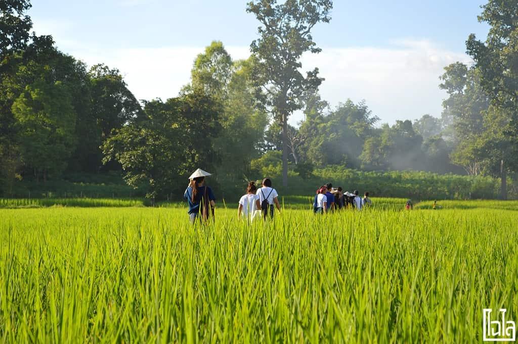 Nong San Sakon Nakhon (45)