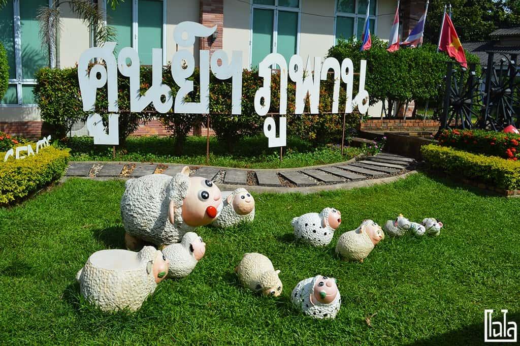 Nong San Sakon Nakhon (75)