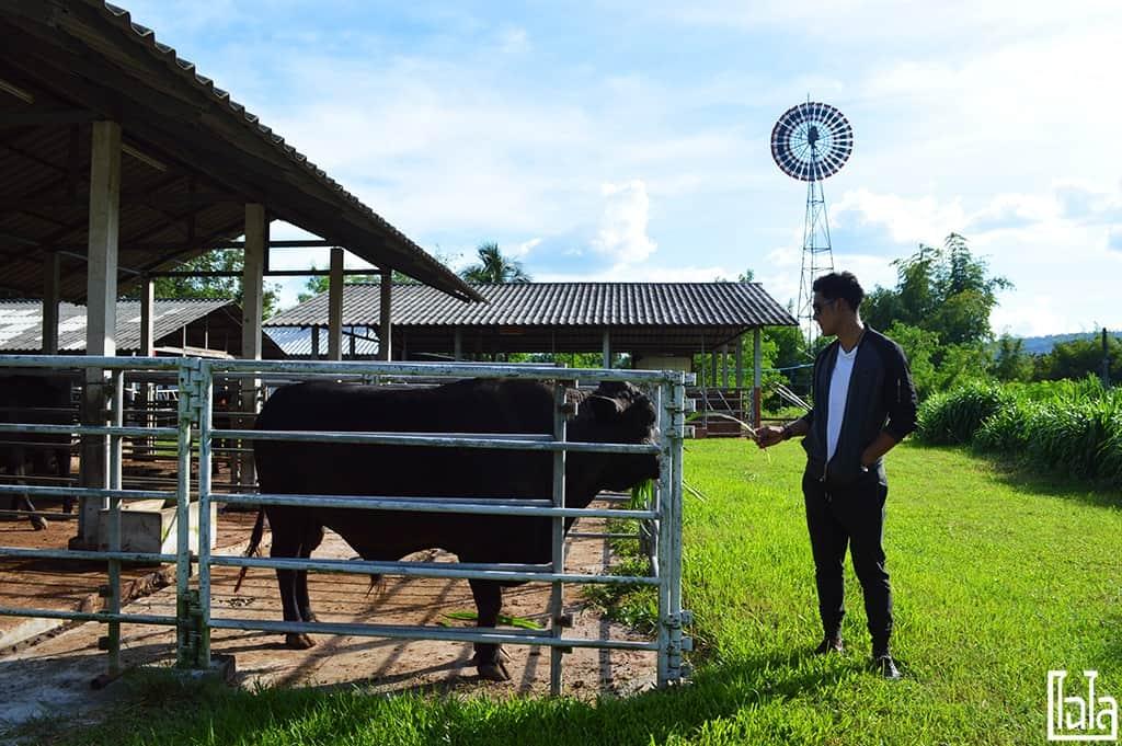Nong San Sakon Nakhon (79)