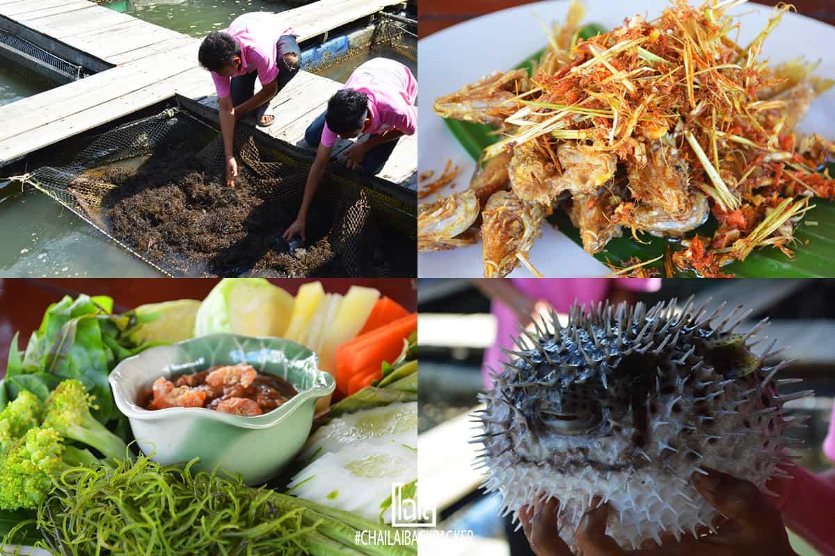 Krabi Thailand (14)